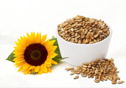 somersaultsnack_sunflower_and_seeds_ss